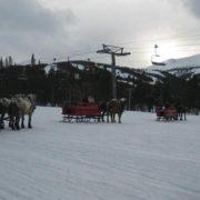 sleigh-01
