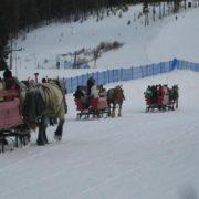 sleigh-02