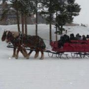 sleigh-05
