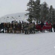 sleigh-06
