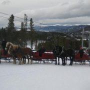 sleigh-08
