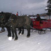 sleigh-09