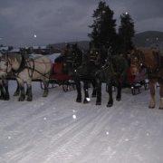 sleigh-11