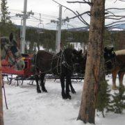 sleigh-14