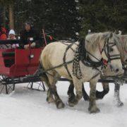 sleigh-15